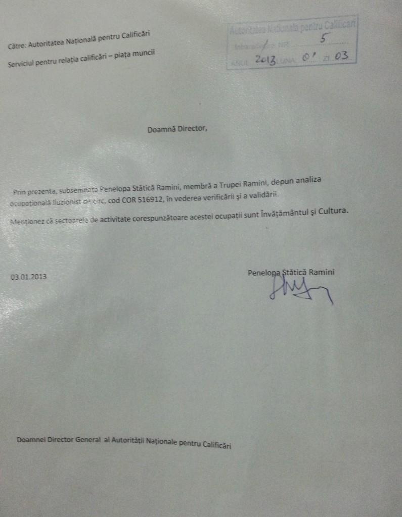 Documentatie implementare standard ocupational