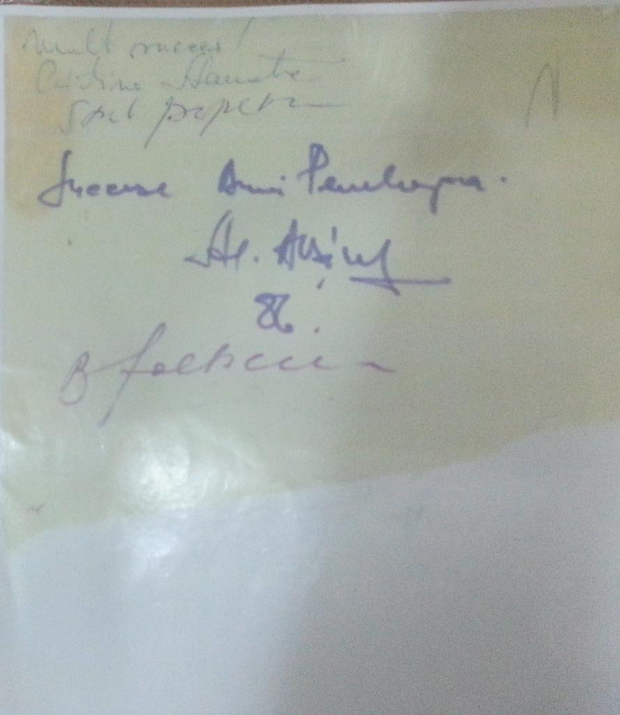 Stela Popescu si Alexandru Arsinel apreciaza Trupa Ramini