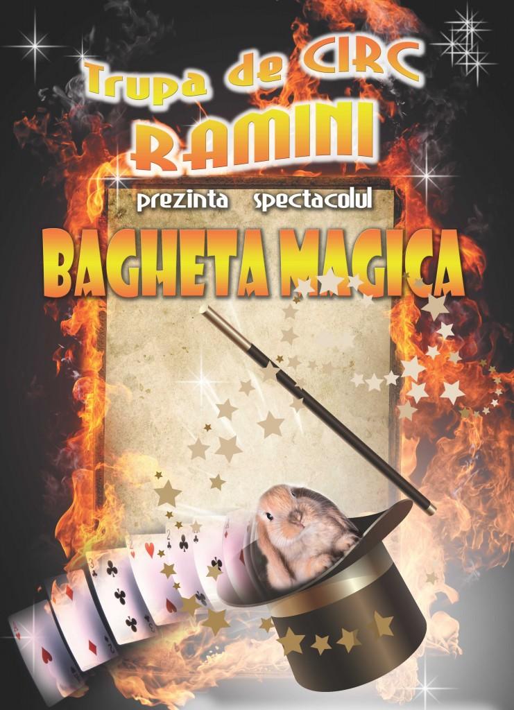 Trupa de circ Ramini Bagheta Magica